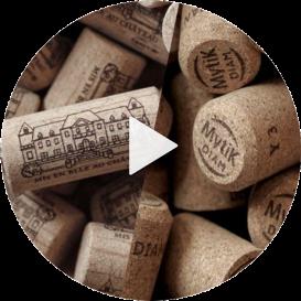 nuovo di zecca scegli il meglio consistenza netta Produttore di Tappi di Sughero per Vivo e Champagne - DIAM